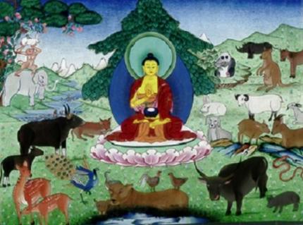 Buddha and Animals