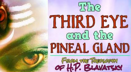 Third Eye, Pineal Gland, Theosophy, Blavatsky